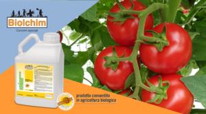 Calibro e qualità in agricoltura biologica - Fertilgest News