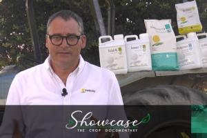 antonio-nacca-tradecorp-fermo-immagine-video-showcase-pomodoro-da-industria