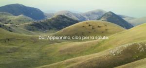 appenbio-20191125