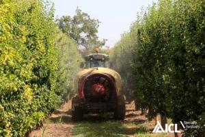 Concimazione fogliare: nutrizione supplementare per risultati eccellenti - le news di Fertilgest sui fertilizzanti