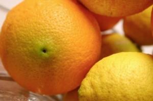 arance-limoni-arancia-limone-agrumi-fonte-morguefile-solracgi2nd