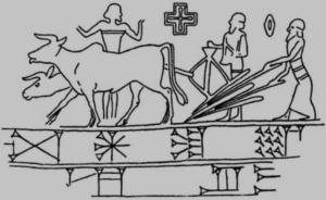 aratura-e-semina-agricoltura-sumerica-fonteuniversita-filadelfia-vardimar-dai-georgofili1