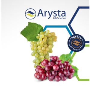 arysta-antioidici-vite