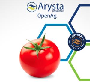 arysta-biosolution-pomodoro