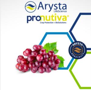 arysta-pronutiva-uva-tavola