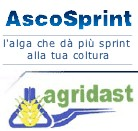 INCREMENTO PRODUTTIVO E MIGLIORE QUALITA' CON ASCOSPRINT - Chimica Dr. Francesco D'Agostino - Fertilgest News