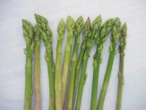 Asparago, una coltura ecofriendly anche domestica - Plantgest news sulle varietà di piante