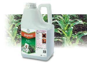 aspect-erbicida-mais-bayer-cropscience