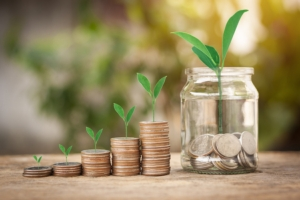 assicurazioni-soldi-monete-piante-by-mongkol-adobe-stock