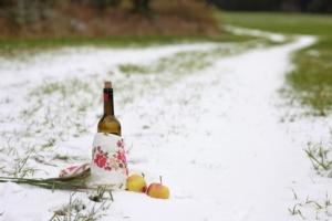 autunno-inverno-mele-vino-prima-neve-by-petrofff757-fotolia-750