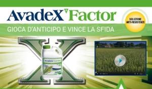 avadex-factor-redazionale-ottobre-2019-fonte-gowan