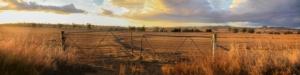 azienda-agricola-chiusa-abbandonata-by-fieldofvision-adobe-stock-750x188
