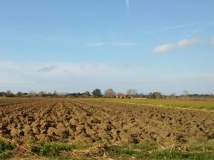 Quando il terreno ha bisogno di aiuto - Fertilgest News