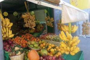 Banane a rischio estinzione... ma non in Sicilia