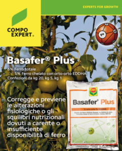 basafer-plus-futurpera-fonte-compo-expert