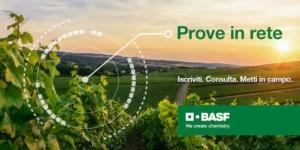 basf-prove-in-rete-2020-fonte-basf