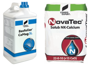 basfoliar-camag-sl-novatec-solub-fonte-compo-expert