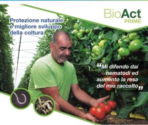 Bioact Prime DC: soluzione naturale contro i nematodi