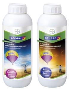 Barbabietola da zucchero? Scegli la strategia giusta: proteggi la tua coltura con Agora<sup>®</sup> e Sphere<sup>®</sup>