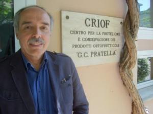 bertolini-paolo-professore-universita-degli-studi-di-bologna