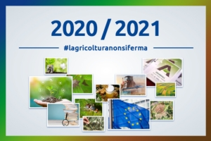 best-of-editoriale-fine-anno-2020