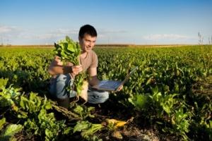 Agricoltura di precisione, ottima scelta in bieticoltura - Plantgest news sulle varietà di piante