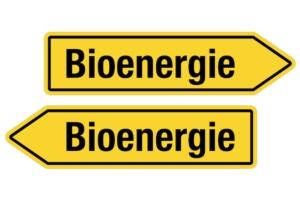 Bioenergia e biocarburanti, nuove frontiere per produrre energia - Plantgest news sulle varietà di piante