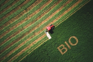 biologico-bio-campo-verde-trattore-by-valentinvalkov-adobe-stock-750x500