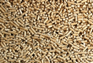 biomassa-pellet-by-bhringer-friedrich-wikipedia-jpg