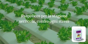 biostimolante-ilsapolicos-fertirrigazione-fonte-ilsa