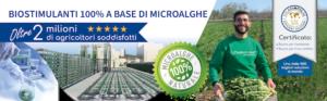 Come Agrialgae<sup>®</sup> migliora la qualità del prodotto - Fertilgest News