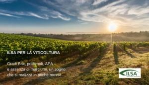 biostimolanti-vite-nutrizione-fonte-ilsa