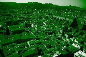 bologna-verde-expogreen-500