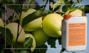 Trattamenti pre raccolta su melo: Boni Protect è la soluzione senza residuo