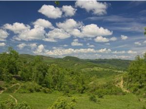 boschi-gubbio-campagna-by-terensky-wikipedia