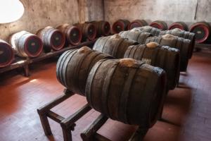 botti-vino-cantina-vitivinicola-by-vpardi-fotolia-750