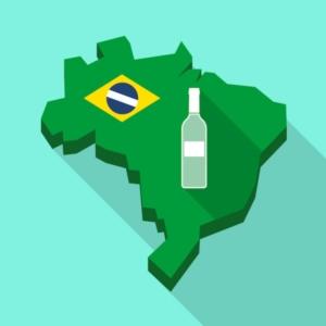 brasile-vino-bottiglia-by-jpgon-fotolia-750