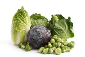 L'importanza dello zolfo per la nutrizione delle brassicacee - Fertilgest News