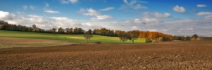 campagna-autunno-campi-campo-by-photo-passion-adobe-stock-750x250