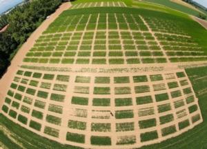 campi-dimostrativi-2018-agricola-2000