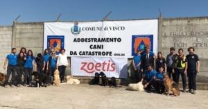 campo-addestramento-cani-da-catastrofe-visco-udine-fonte-zoetis