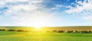 campo-agricoltura-alba-sole-by-serghei-velusceac-adobe-stock-750x336