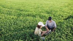 campo-agricoltura-digitale-tablet-by-diedov-stock-adobe-stock-750x422