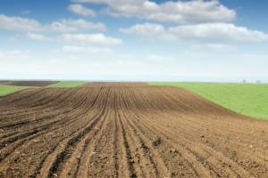 campo-arato-agricoltura-by-goce-risteski-fotolia-750