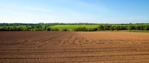 campo-arato-campagna-orizzonte-adobe-stock-750x317