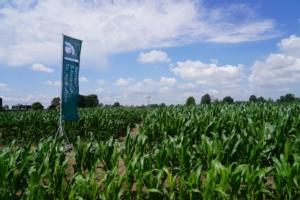 campo-demo-mais-agricola-2000-2020