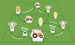 campo-innovazione-marketing-export-fonte-agriacademy-ismea