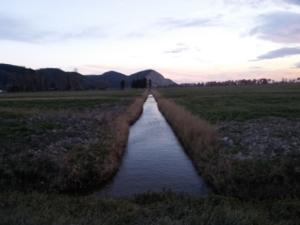 canale-bonifica-campi-by-matteo-giusti-agronotizie