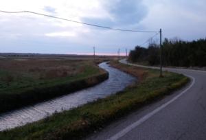 canale-bonifica-strada-750-by-matteo-giusti-agronotizie-jpg