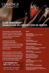 """Fragole, Club Candonga: """"Offerta e sfide del mercato"""" - Plantgest news sulle varietà di piante"""